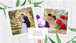 PR模板制作水彩花卉叶子生长元素动画唯美婚礼照片相册视频